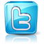Twitter Social Media Marketing Services
